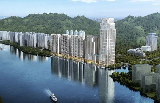 杭州青田商会考察团回青考察华侨总部经济大楼项目