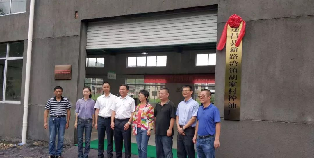 指导组深入遂昌新路湾镇胡家村,实地察看胡家村榨油厂项目,并为胡家村榨油厂揭牌。
